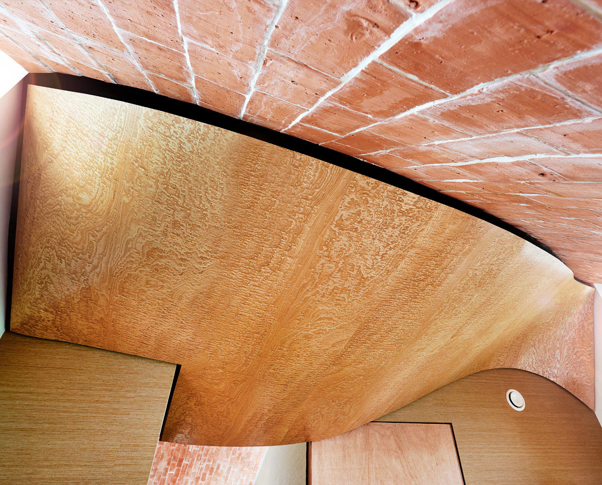 Verity's curved timber ceiling. Designed by Hawkes Architecture.