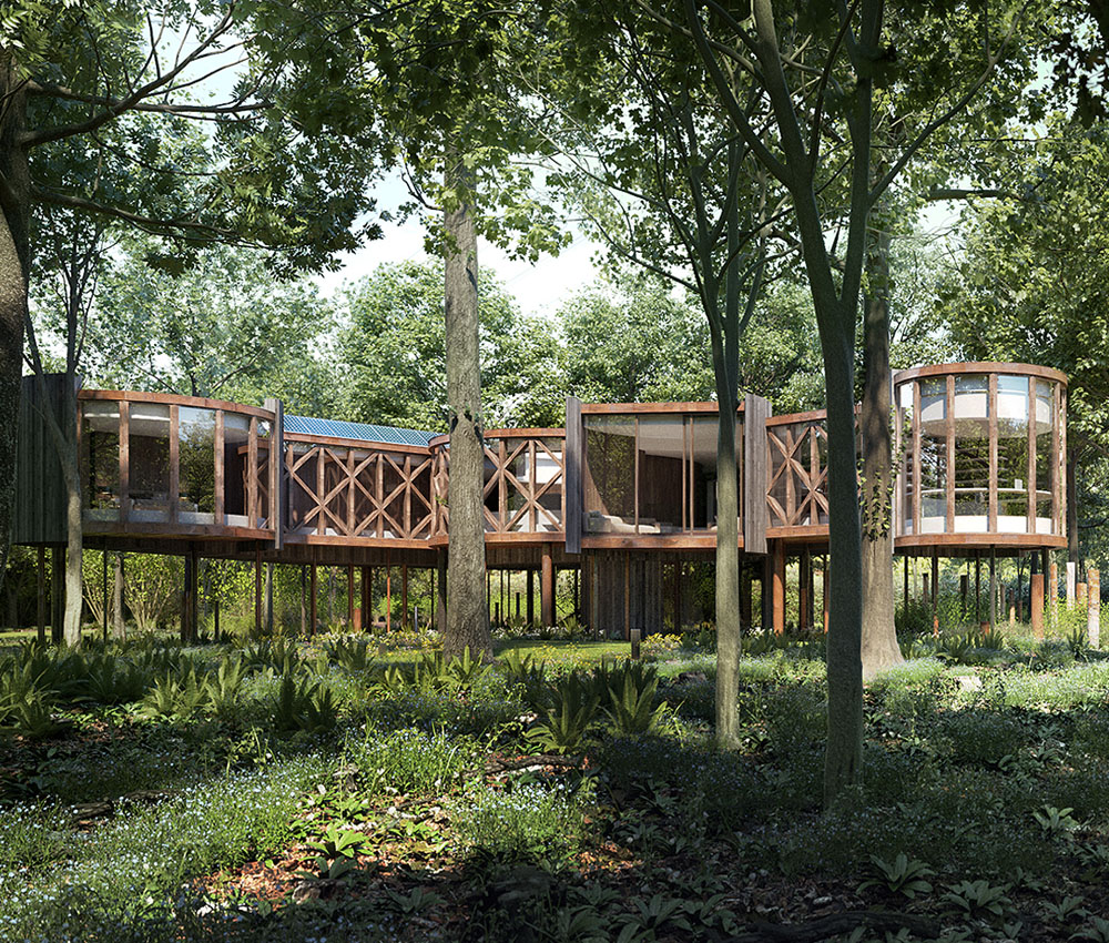 Tree House (Para 55). Designed by Hawkes Architecture, this energy efficient grand design follows passive house principles.