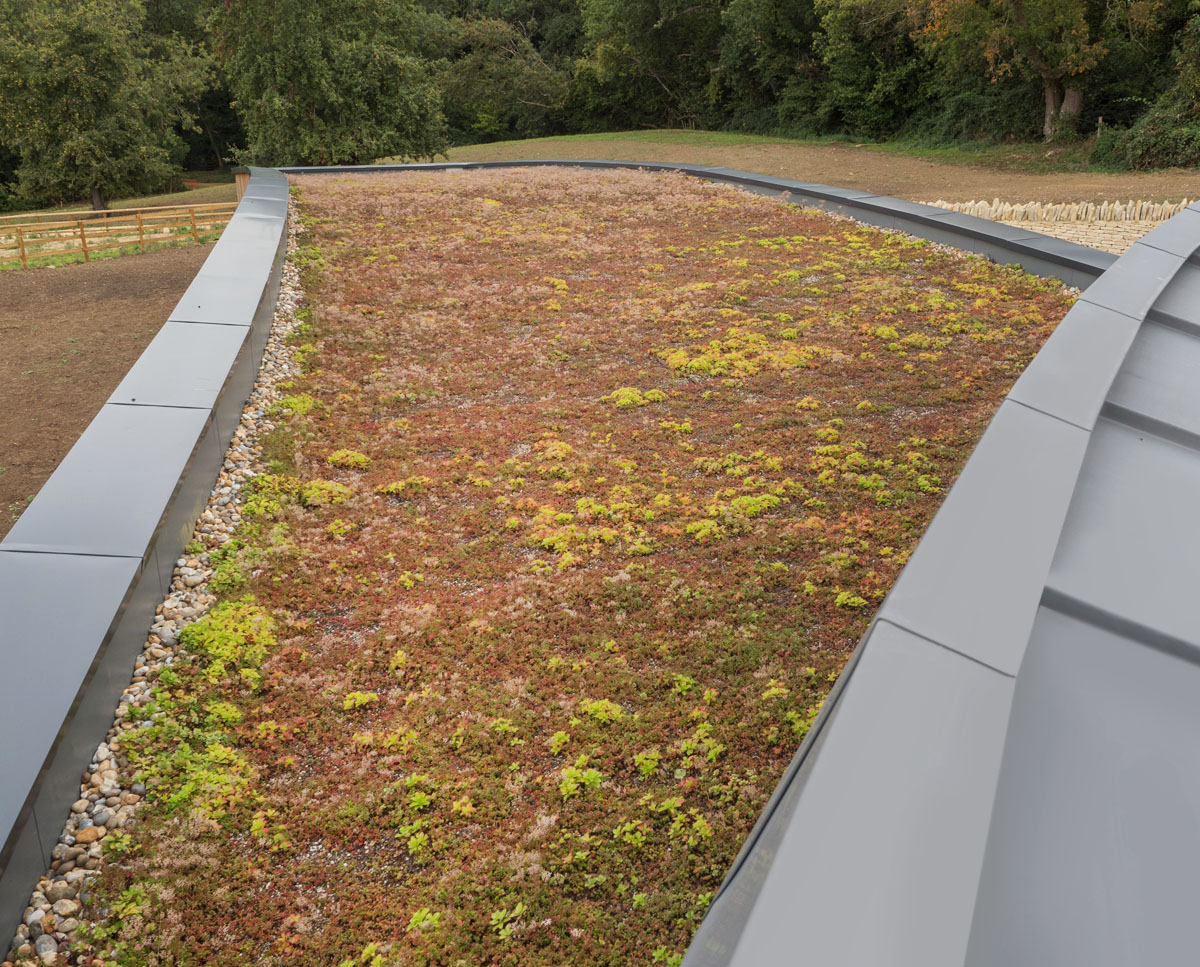 The sedum roof at Headlands (Para 55). Designed by Hawkes Architecture, this energy efficient grand design, follows passive house principles.