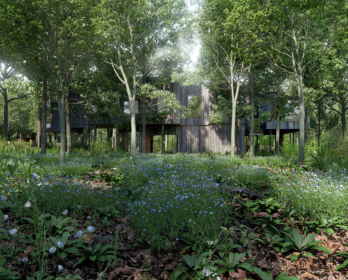 External garden render of Tree House (Para 55). Designed by Hawkes Architecture, this energy efficient grand design, follows passive house principles.